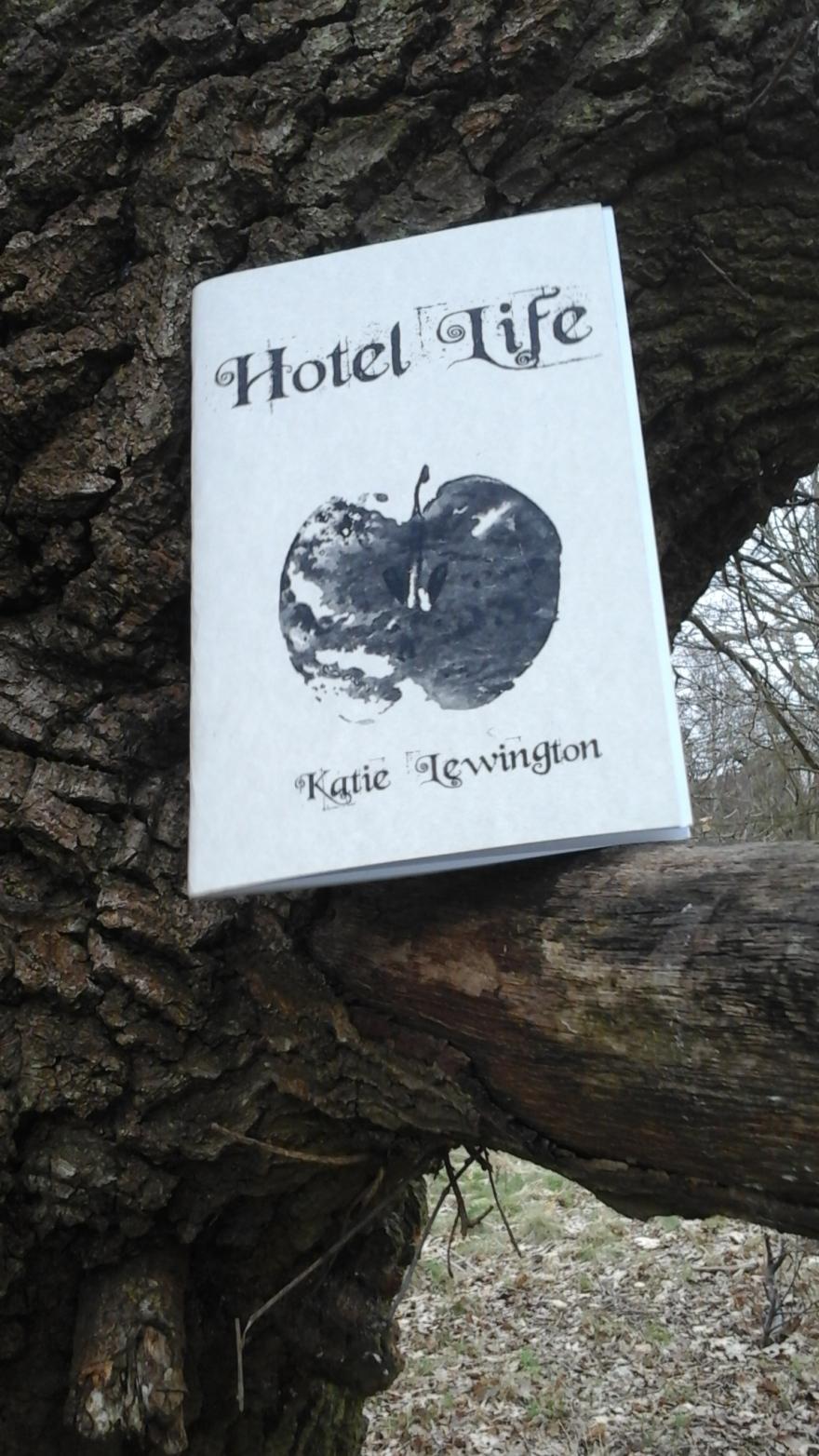 hotellifetreephotolewington