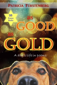 AsGoodAsGold-PatFurstenberg-BookCover.jpg