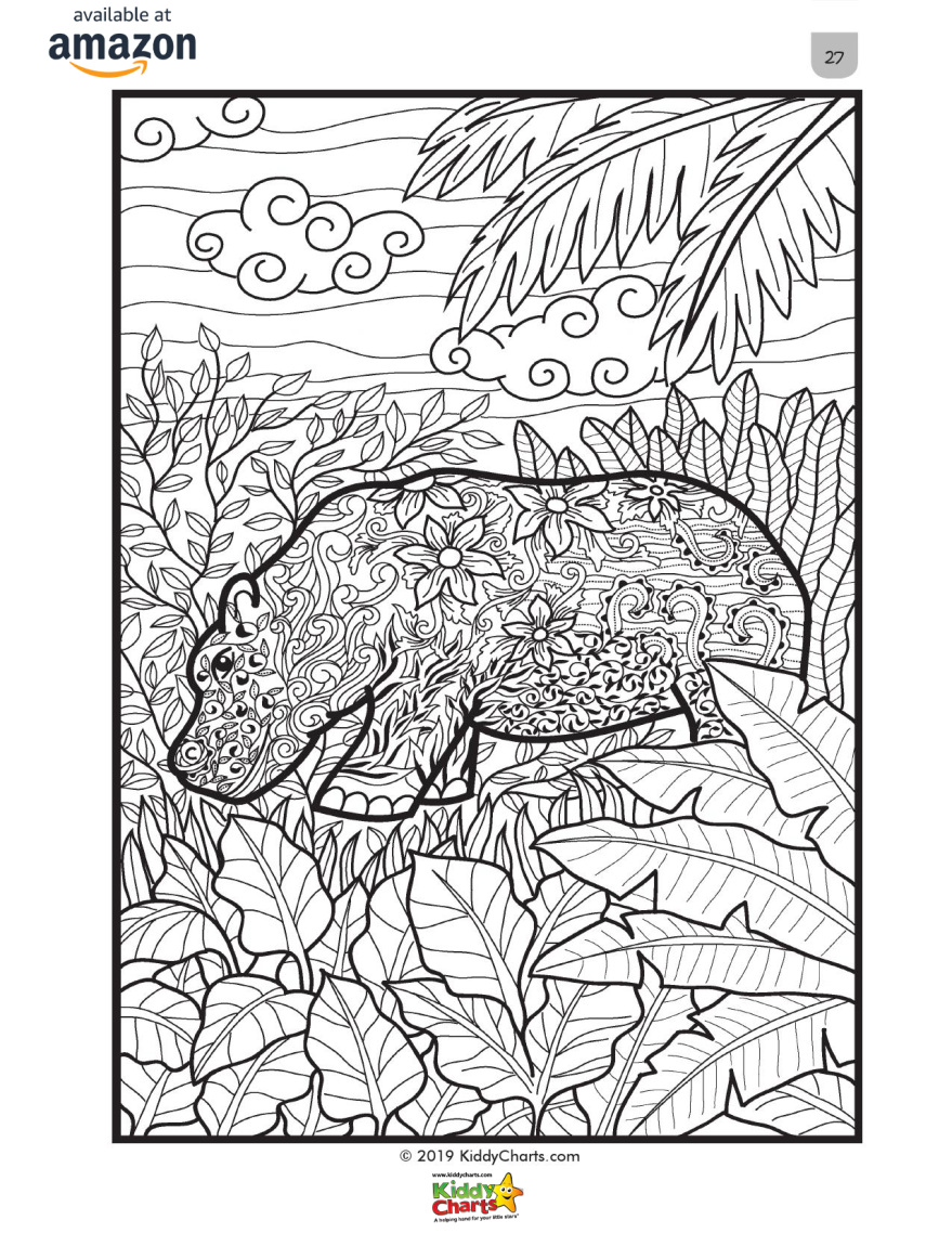 Hippo Coloring Page for Adults