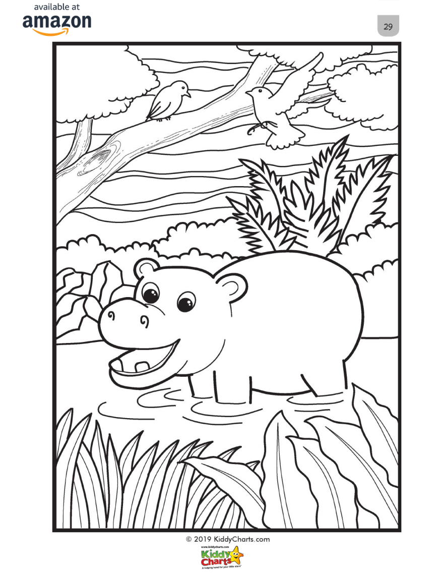Hippo Coloring Page for Kids