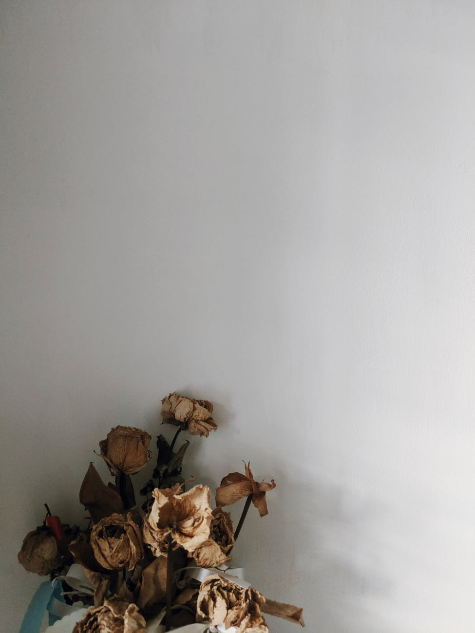 photo of dried roses